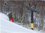 Jack letting rip, uploaded by MikePow  [Niseko Mountain Resort Grand Hirafu, Kutchan Town, Hokkaido]