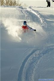 Alex on the fringes of Center, uploaded by Mike Pow  [Niseko Mountain Resort Grand Hirafu, Kutchan Town, Hokkaido]