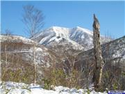 Mt Annupuri from road near Goshiki Onsen 15th Nov., uploaded by NisekoNow  [Niseko Mountain Resort Grand Hirafu, Kutchan Town, Hokkaido]