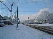 Fresh snow in the village 17th Nov., uploaded by NisekoNow  [Niseko Mountain Resort Grand Hirafu, Kutchan Town, Hokkaido]