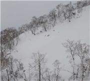 Searching for some powder off the Ace quad. Photo - Randy Wieman, uploaded by NisekoNow  [Niseko Mountain Resort Grand Hirafu, Kutchan Town, Hokkaido]