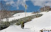 First snow!, uploaded by NisekoNow  [Niseko Mountain Resort Grand Hirafu, Kutchan Town, Hokkaido]