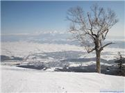 Top of Kitanomine zone (2nd Mar2010), uploaded by RedLotus  [Furano, Furano City, Hokkaido]