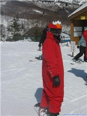 22st Feb. Elmo wants to go snowboarding in the terrain park, uploaded by Sciclone