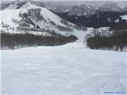 Not the best of conditions, uploaded by muikabochi  [Maiko Snow Resort, Minamiuonuma City, Niigata]