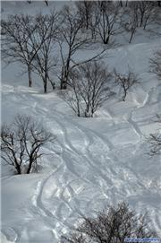 5th February 2012, uploaded by muikabochi  [Maiko Snow Resort, Minamiuonuma City, Niigata]