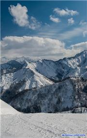 NASPA 4th February 2015, uploaded by muikabochi  [NASPA Ski Garden, Yuzawa Town, Niigata]