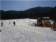 View from the base accross the beginner course!, uploaded by snowdude  [Fujimi Panorama Resort, Fujimi Town, Nagano]