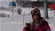 Fabiana, uploaded by snowvadius  [Geto Kogen, Kitakami Town, Iwate]